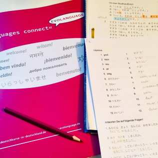 Japanisch-Kurs in Mainz_Japanisch lernen bei Evolanguage